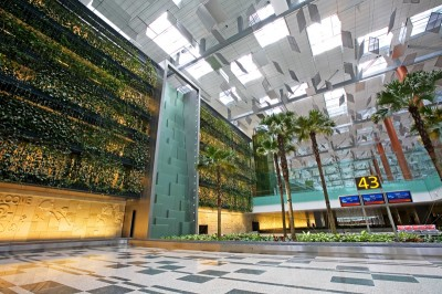 The Green Wall at Changi Airport, Terminal 3