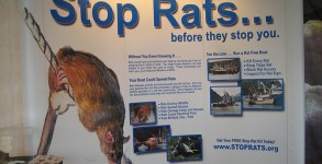 Stop those rats from boarding planes!
